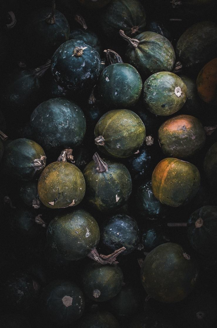 pumpkingalettes (11)